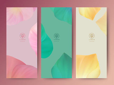 Branding Packageing leaf nature background, banner voucher, spring summer tropical, vector illustration