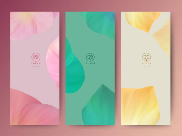 branding pakowanie liści tło natury, kupon banner, wiosna lato tropikalne, ilustracja wektorowa - tajlandia stock illustrations