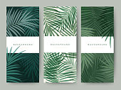 Branding Packaging palm coconut bamboo tree leaf nature background, icon banner voucher, spring summer tropical, vector illustration