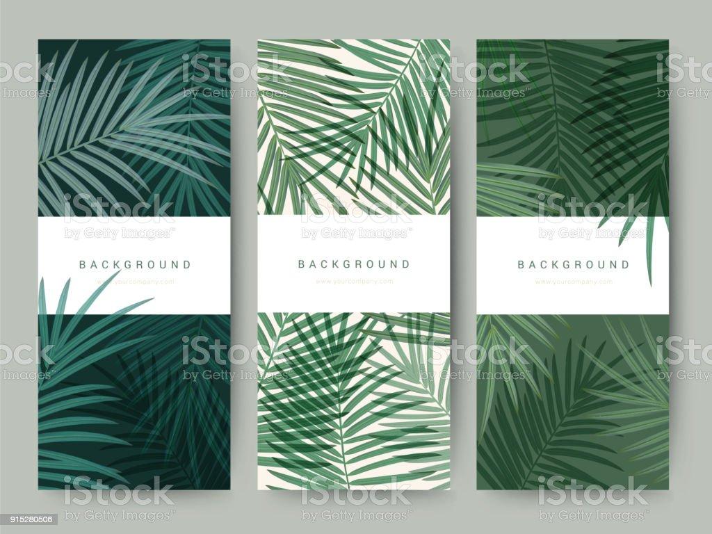 Branding Packaging Palma coco bambú árbol hoja naturaleza fondo, vale de bandera icono, primavera verano tropical, vector ilustración - ilustración de arte vectorial