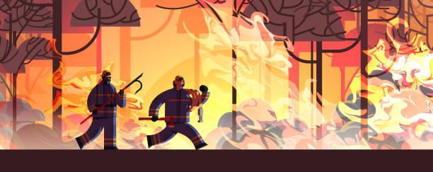 bildbanksillustrationer, clip art samt tecknat material och ikoner med modiga brandmän med skrot axe och slang släckning farlig wildfire brandmän slåss med bush brandsläckning naturkatastrof concept intensiv orange flames horisontell - skog brand