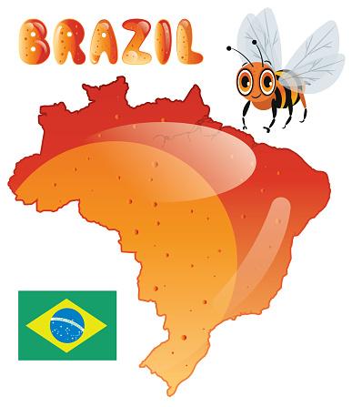 Brazil and Honey, Sao Paulo, Rio de Janeiro, Salvador, Fortaleza, Belo Horizonte, Brasilia, Curitiba, Manaus, Recife, Belem, Porto Alegre, Goiania, Guarulhos, Campinas, Nova Iguacu, Maceio, Sao Luis , Duque de Caxias, Natal, Teresina