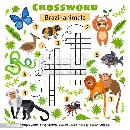 Brazil animals crossword. For preschool kids activity worksheet. Children crossing word search puzzle game