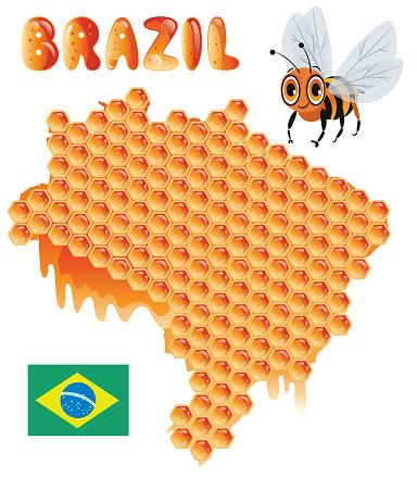 Brazil, Honeycomb, Bee and Honey, Sao Paulo, Rio de Janeiro, Salvador, Fortaleza, Belo Horizonte, Brasilia, Curitiba, Manaus, Recife, Belem, Porto Alegre, Goiania, Guarulhos, Campinas, Nova Iguacu, Maceio, Sao Luis , Duque de Caxias, Natal, Teresina