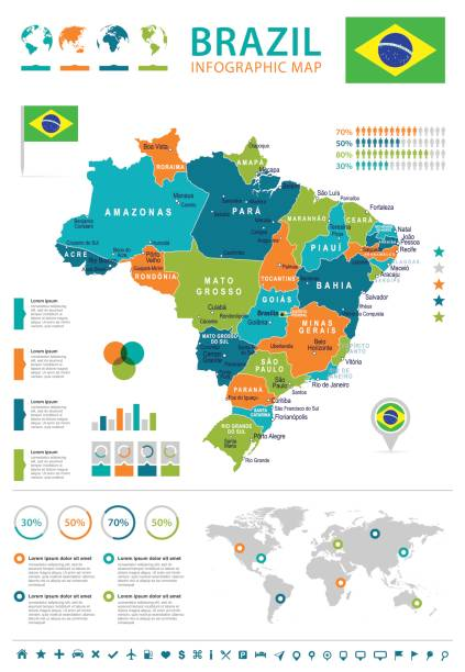 ilustrações, clipart, desenhos animados e ícones de brasil - mapa e bandeira - infográfico ilustração - brazil map
