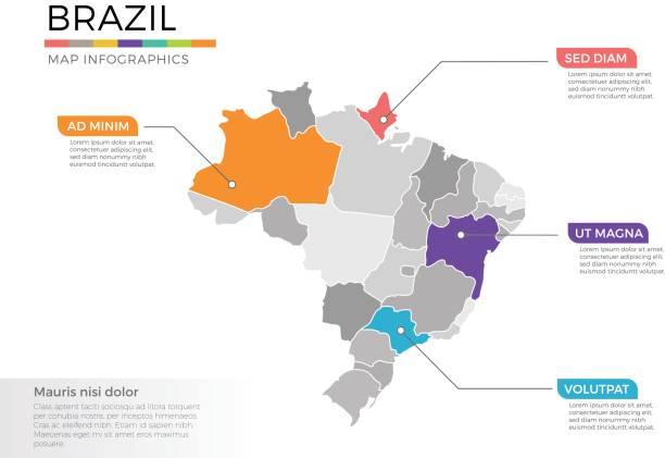 ilustrações, clipart, desenhos animados e ícones de modelo de vetor de infográficos brasil mapa com regiões e marcas de ponteiro - brazil