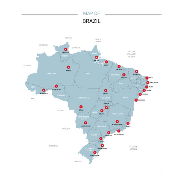 ilustrações, clipart, desenhos animados e ícones de vetor de mapa do brasil com pino vermelho. - brazil map