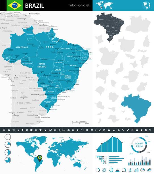 ilustrações, clipart, desenhos animados e ícones de 08 - brasil - infográfico murena 10 - manaus