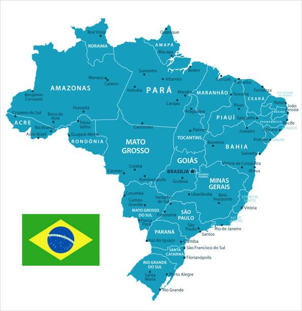 ilustrações, clipart, desenhos animados e ícones de 11 - brasil - murena isolado 10 - manaus
