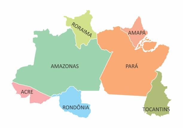 ilustrações, clipart, desenhos animados e ícones de região norte do brasil - manaus