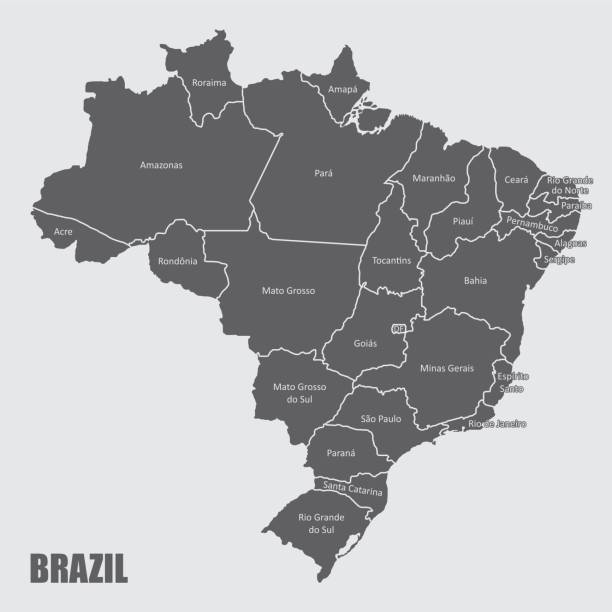 ilustrações, clipart, desenhos animados e ícones de mapa das regiões do brasil - brazil