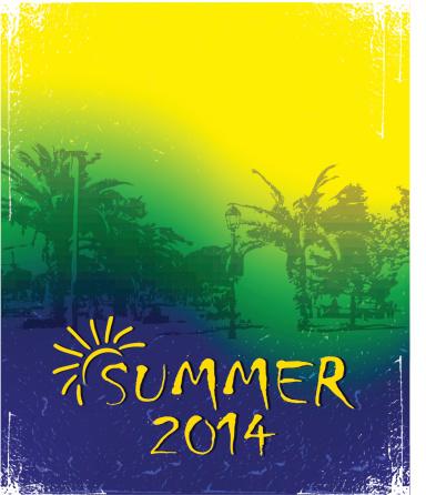 Brazil Summer 2014.