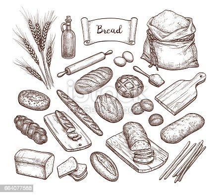 Bread and Ingredients. Big set. Hand drawn vector illustration. Isolated on white background. Vintage style.