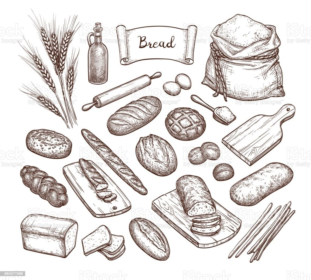 Bread and Ingredients. vector art illustration