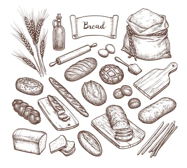 Bread and Ingredients. Bread and Ingredients. Big set. Hand drawn vector illustration. Isolated on white background. Vintage style. bread stock illustrations