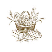 Vector hand drawn bakery illustration. Wicker bread basket illustration