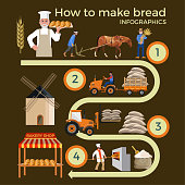 Bread production stages. Agriculture concept. Cultivation of wheat and bread making. Vector illustration isolated on dark background