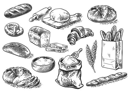 bread sketch set