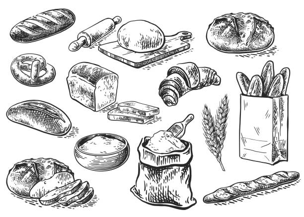 bread sketch set Bread vector hand drawn set illustration in graphic style. Other types of wheat, flour fresh bread. Vector hand drawn vintage engraving illustration for poster, label and menu bakery shop rolling pin stock illustrations