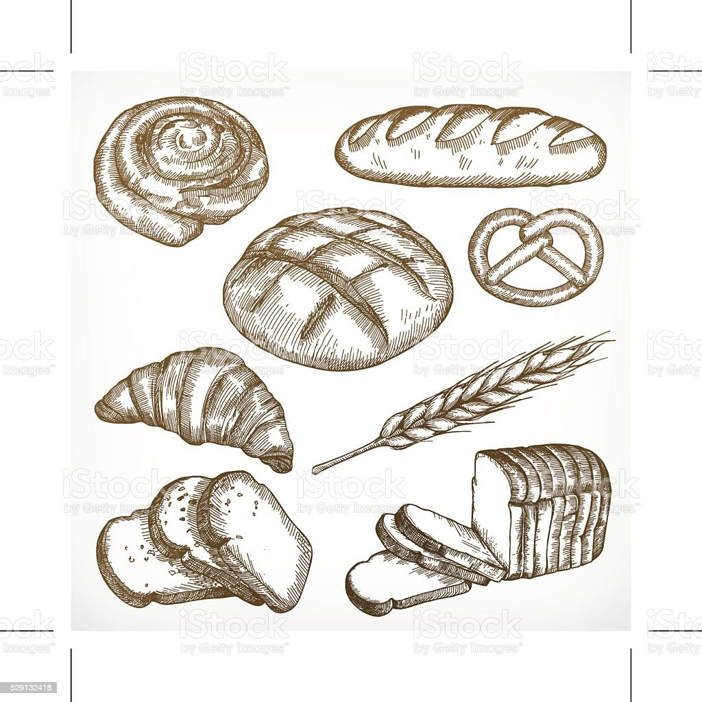 Bread sketches, hand drawing vector art illustration