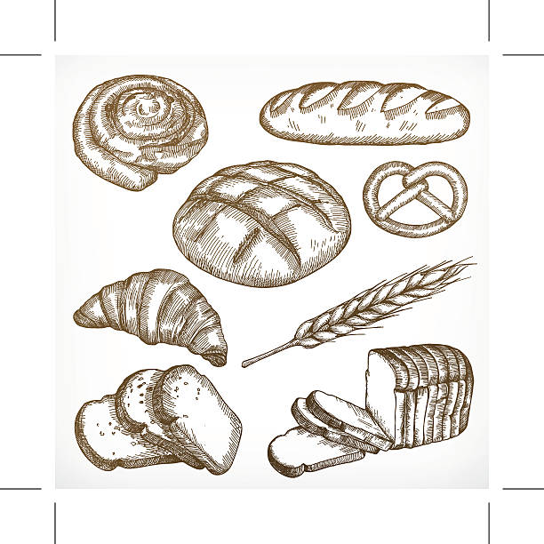Bread sketches, hand drawing Bread sketches, hand drawing, vector set bread drawings stock illustrations