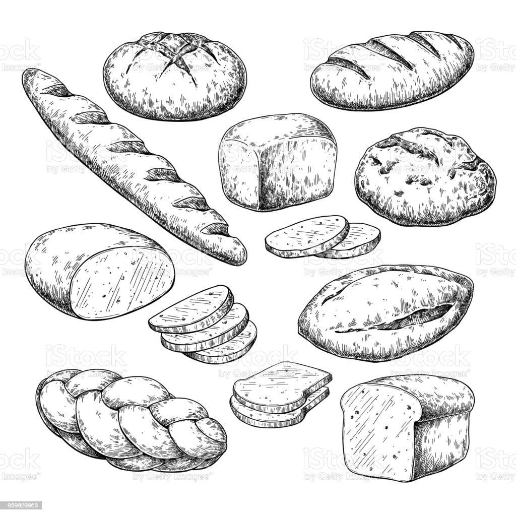 Dessin De Vectoriel Pain Croquis De Produits De Boulangerie Cuisine