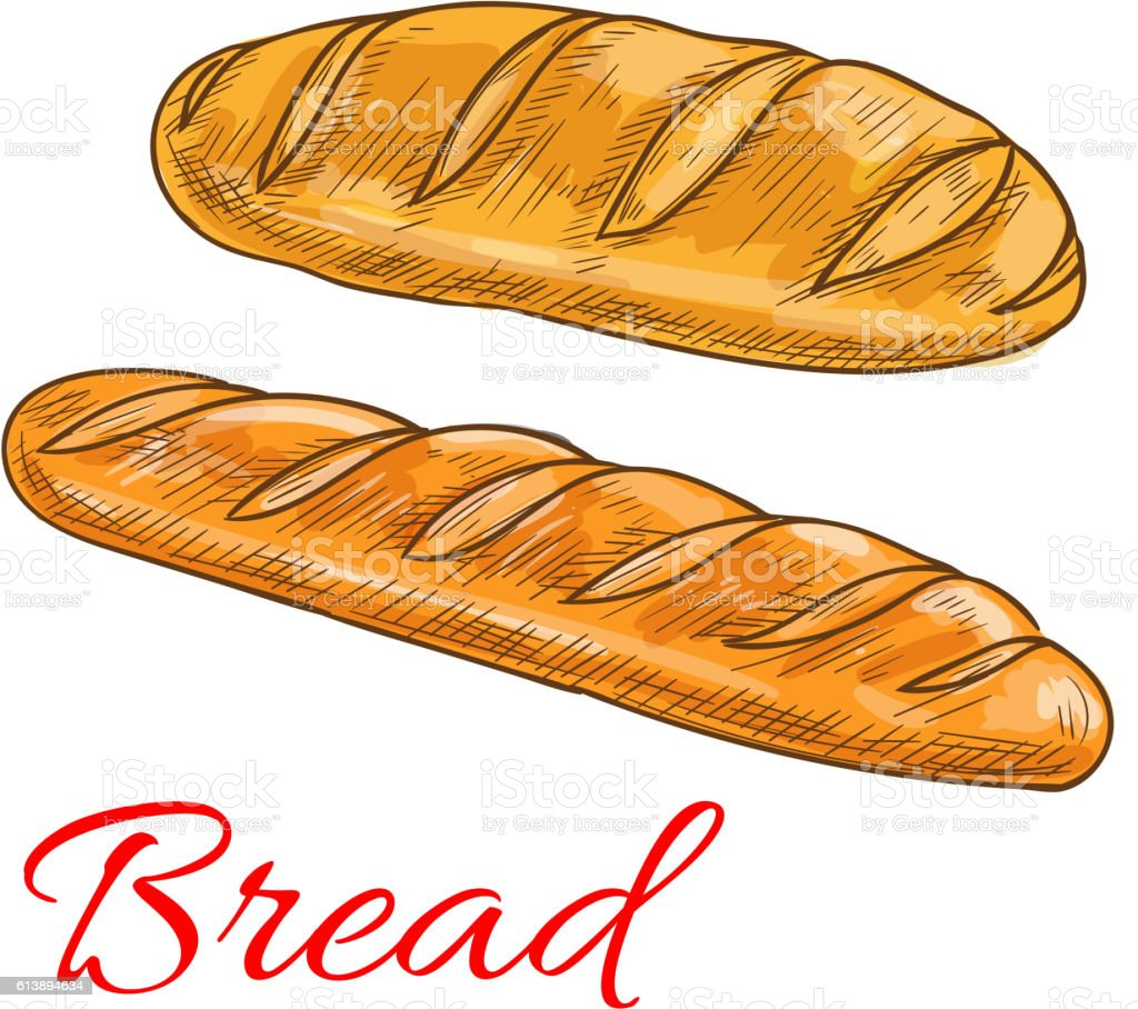 Bread wheat loaf and baguette sketch icons vector art illustration
