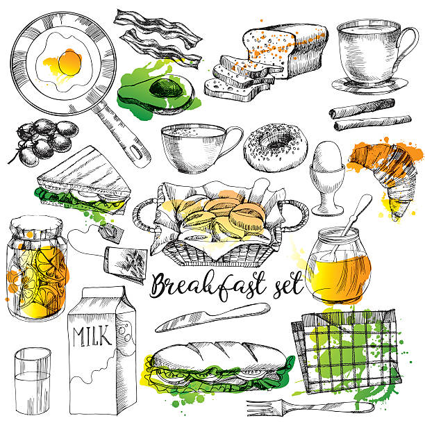 Breakfast time Breakfast time. watercolor vector background set avocado drawings stock illustrations