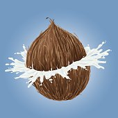 Vector illustration of a breaking coconut with a splash of milk coming out. Included is also a EPS-8 and PNG file with transparent background. (This blue background is on a separate layer just for contrast to the white milk )