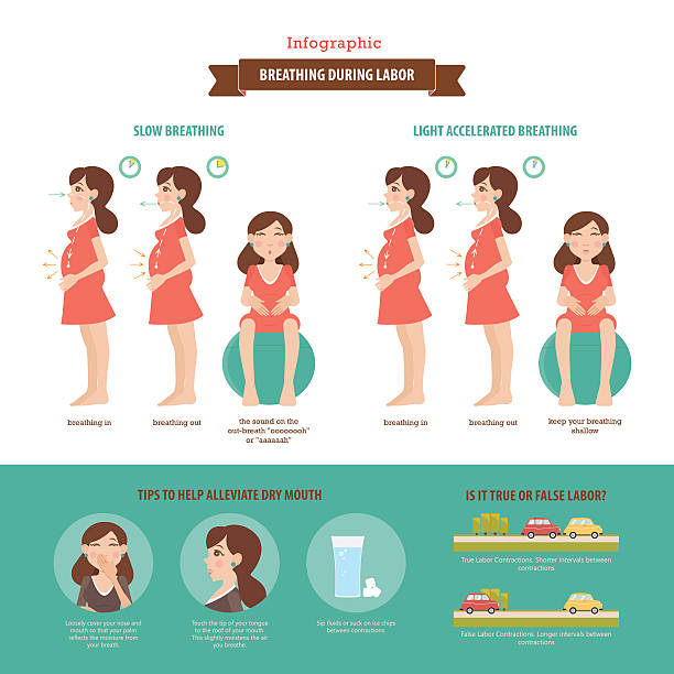 Breathing during labor. Vector infographic. vector art illustration