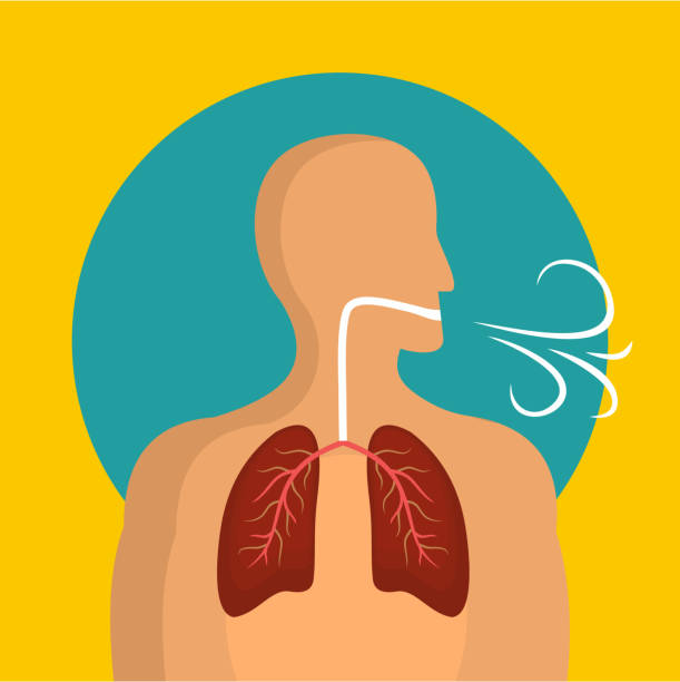 Breathing lungs icon, flat style vector art illustration