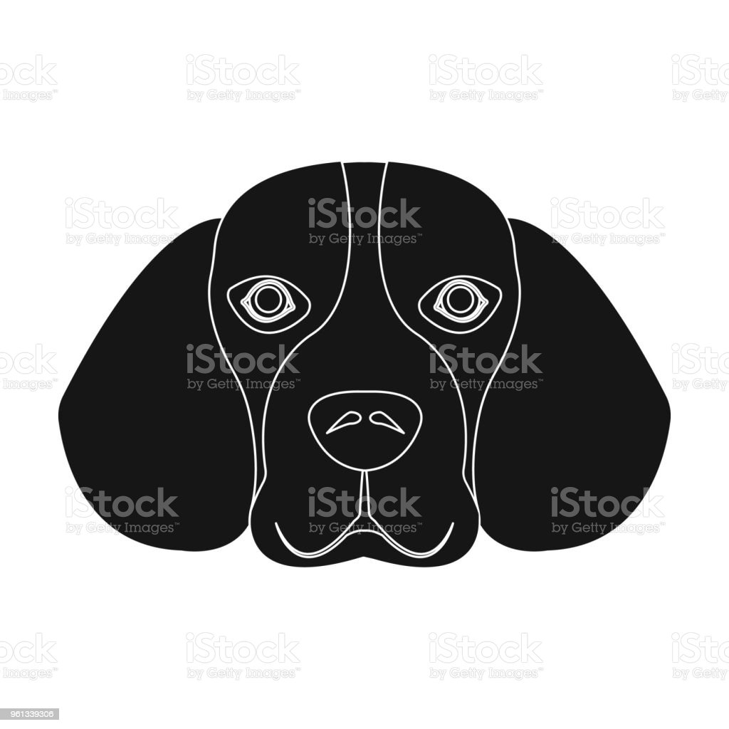 Breed dog beagle..Muzzle beagle single icon in black style vector symbol stock illustration web. vector art illustration