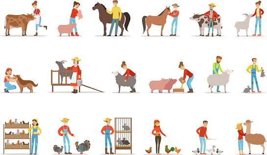 Breeding animals farmland. Farm profession worker people breeding livestock. Set of colorful cartoon detailed vector Illustrations isolated on white background