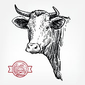 istock Breeding cattle. head of a Texas longhorn. vector sketch on white background 1287291156