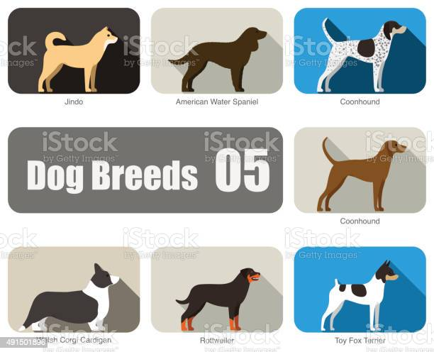 Breeds of dog standing side vector vector id491501896?b=1&k=6&m=491501896&s=612x612&h=cg4kv8gil zgnko9trsjabjampqe8w0gsp qamnsrme=