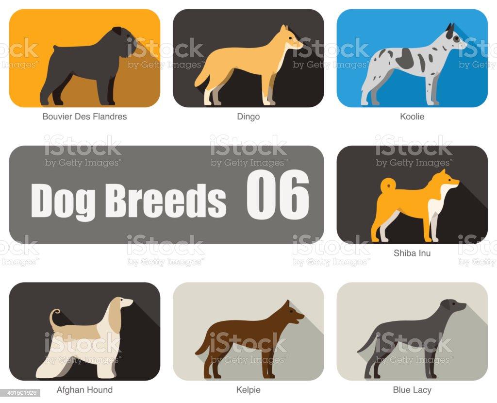 Breeds of dog standing side, vector vector art illustration