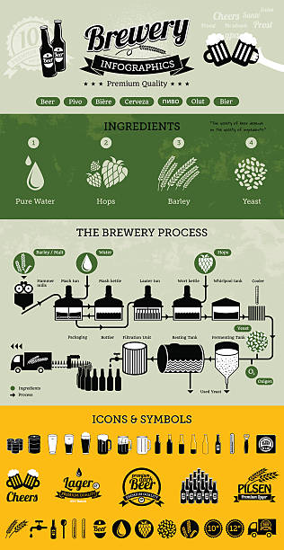 Brewery infographics with beer elements & icons vector art illustration