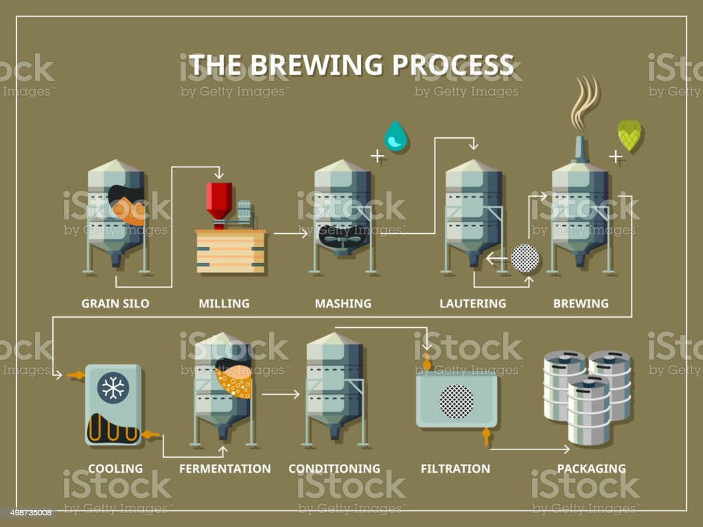 Brewery process infographic in flat style vector art illustration