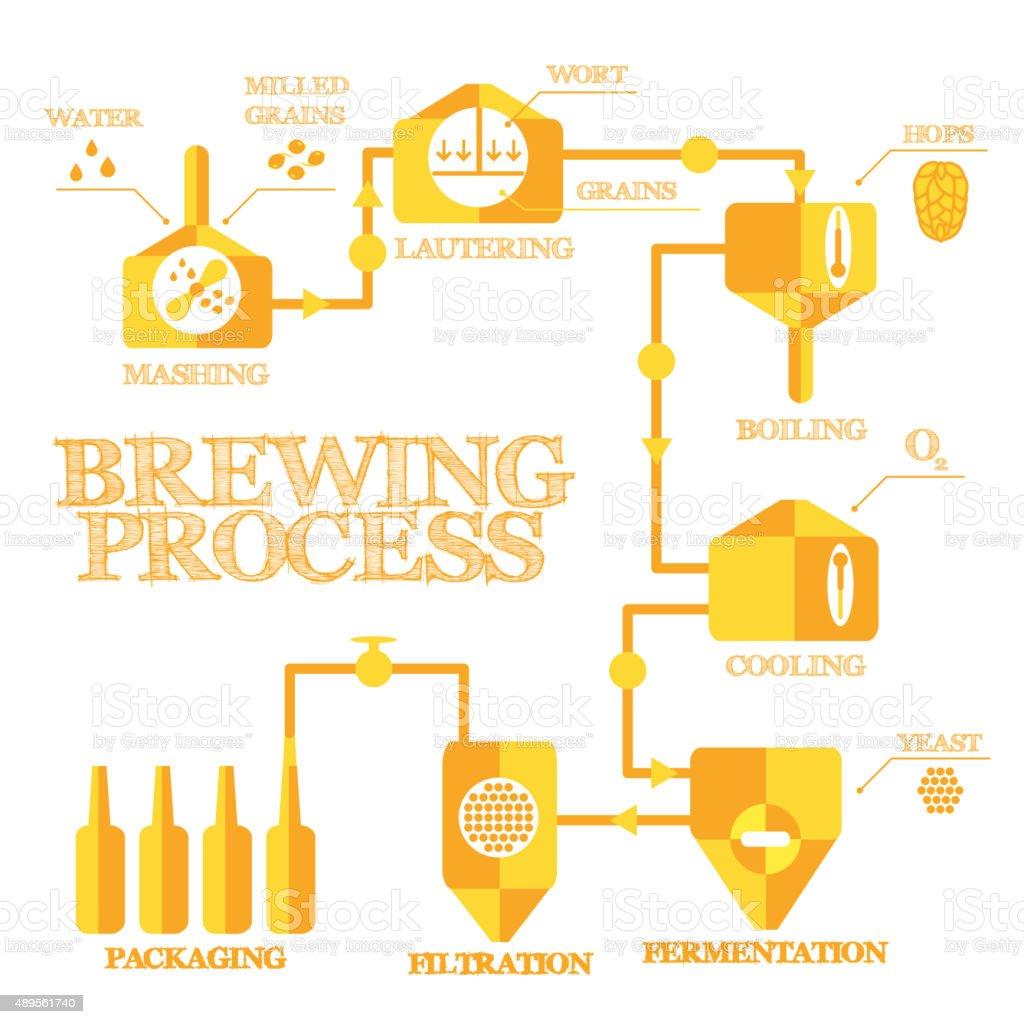 Brewing – Infográfico - ilustração de arte em vetor