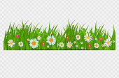 Grass and flowers border, greeting card decoration element for Easter on a Transparent Background. Vector Illustration. EPS10