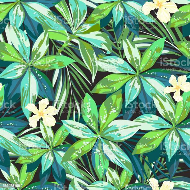 Bright colorful tropical seamless background with leaves and flowers vector id539478168?b=1&k=6&m=539478168&s=612x612&h=oxcmeh1stcs6qnl68etpudocb1le86wp1opwtql6sl0=