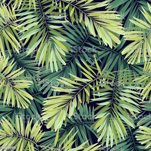 Bright green background with tropical plants seamless vector exotic vector id648705420?b=1&k=6&m=648705420&s=612x612&h=0tawuo7e7a85cvdmzje34wwhzqnl wvbhv8xqbiiga8=
