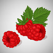 Bright juicy raspberry on grey background. Sweet delicious for your design in simple cartoon style. Vector illustration. Berries Collection.