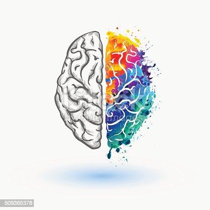 istock Bright Left and right hemisphere of human brain 509365378