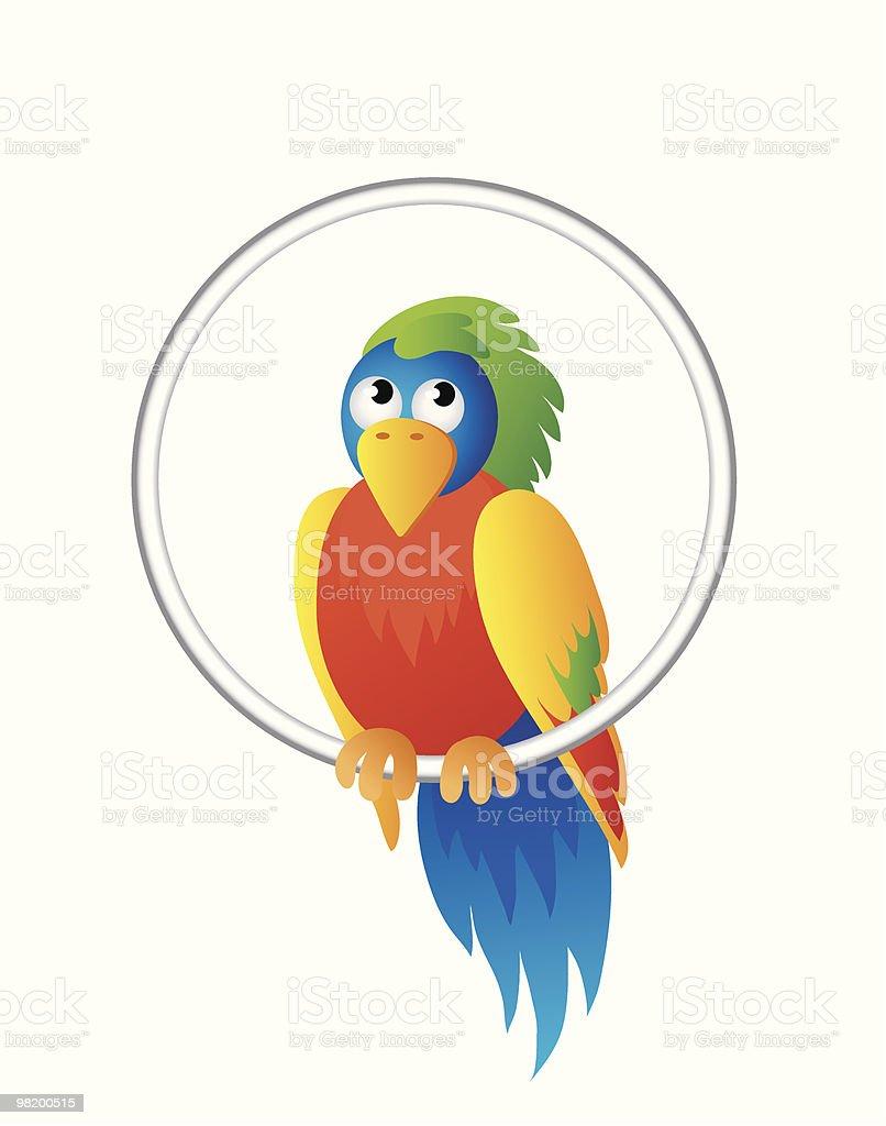 Pappagallo brillante pappagallo brillante - immagini vettoriali stock e altre immagini di ala di animale royalty-free
