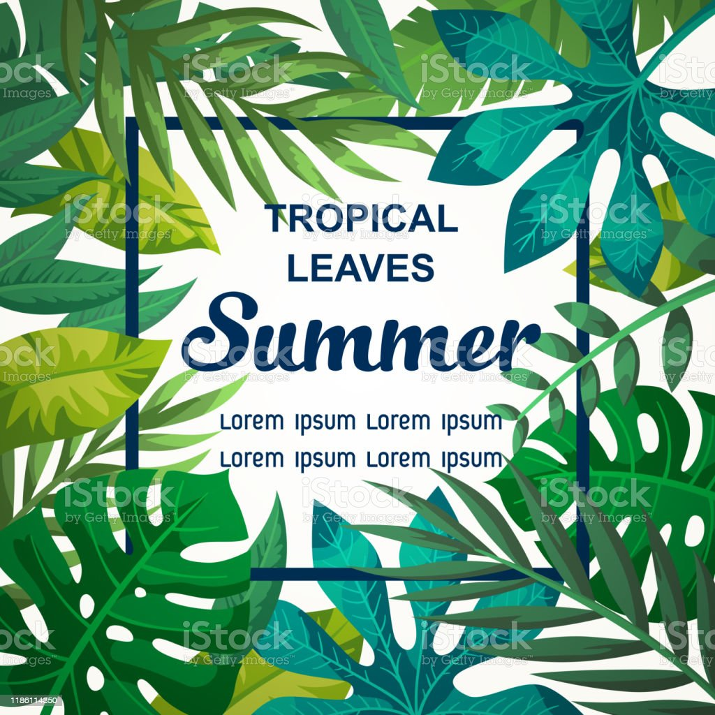Bright Summer Tropical Leaves Vector Design Bright Vector Background With Leaves Colourful Tropical Illustration For Flyer Or Invitation Card Stock Illustration Download Image Now Istock Tropical seamless patterns, tropical digital paper, hand painted floral pattern, vector seamless pattern, vector background, banana leaves. bright summer tropical leaves vector design bright vector background with leaves colourful tropical illustration for flyer or invitation card stock illustration download image now istock