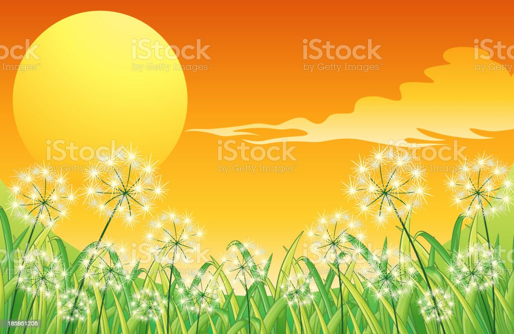 Bright sunset scenery royalty-free stock vector art