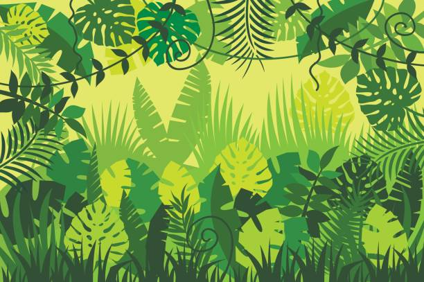 bright tropical background - jungle stock illustrations
