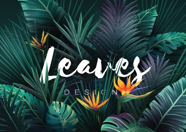 Bright tropical background with jungle plants. Exotic pattern with palm leaves Bright tropical background with jungle plants. Exotic pattern with palm leaves. Vector illustration tropical flower stock illustrations