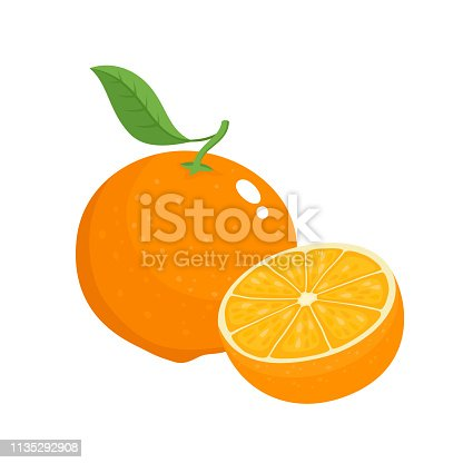Bright vector set of colorful half and whole of juicy orange. Fresh cartoon oranges on white background.